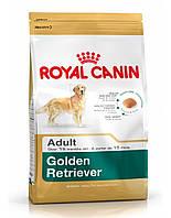 сухий корм для собак ROYAL CANIN Golden retriever adult 12 кг