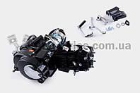 """Двигатель   Delta 110cc   (АКПП 1Р52FMH) (крепление на сайлентблоке)   """"TZH"""""""