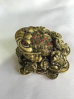 Денежная Жаба с детенышами на монетах - символ богатства и материального благополучия
