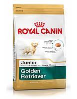 сухий корм для собак ROYAL CANIN Golden retriever junior 12 кг
