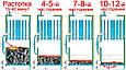 ПАРОГЕНЕРАТОР твердотопливный «WICHLACZ Wp» производительностью 200-1000 кг пара в час, фото 4