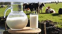 В Украине заработает Нидерландский тренинговый центр по развитию молочного хозяйства