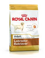 сухий корм для собак ROYAL CANIN Labrador retriever adult 12 кг