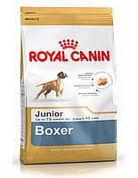 сухий корм для собак ROYAL CANIN Boxer 30 junior  12 кг