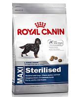 сухий корм для собак ROYAL CANIN Maxi sterilised 12 кг
