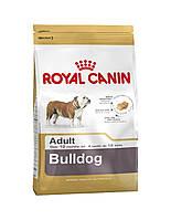 Сухий корм для собак ROYAL CANIN Bulldog 24 adult 12 кг