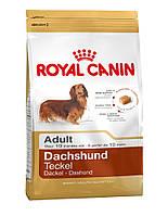 ROYAL CANIN Dachshund adult 7.5 сухий корм для собак