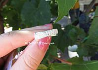 Серебряное кольцо арт. 20415, фото 1