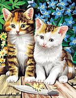 """Картина раскраска по номерам на холсте """"Чудесные котята"""", MG181, 40х50см., фото 1"""