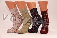 Стрейчевые хлопковые женские носки STYLE LUXE Ф8 KJS