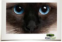 Ziwi peak - натуральний корм для кішок висушений на повітрі