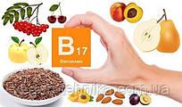Витамин В17 против рака