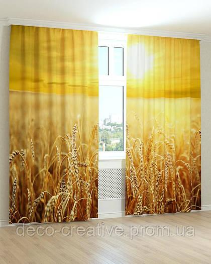 Фотошторы пшеничное поле