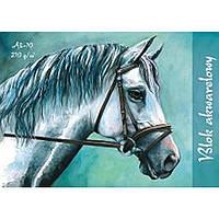 Альбомы для художественных работ Kreska 16P510941 A4 15л (21х29,7см) 210гр