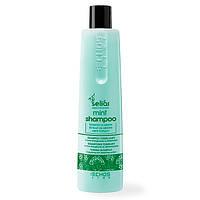 Шампунь с ментолом - Echosline Mint Shampoo 350ml (Оригинал)