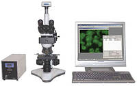 MICROS : MC 300 (TFXS) Компьютерная система анализа для флюоресценции