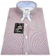 Мужская рубашка с коротким рукавом в полоску S 5.1 7338-V5 M 50 / (40)