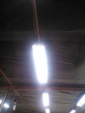Светильник трассовый открытый под led лампы Т-8 2х120см. СПВ-02 (1200), фото 2