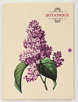"Папка на кнопке А4 объемная 10 мм ""Botanique"" L6191"