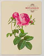 """Папка-скоросшиватель с карманом А4 """"Botanique"""" L6188"""