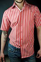 Оптом мужская рубашка