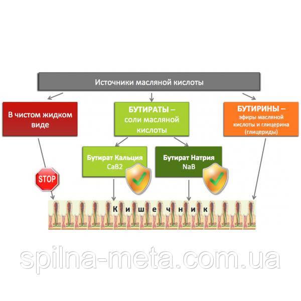 Защищенный бутират натрия СМ3000 (стимулятор роста для свиней)