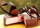 """Плівка для роботи з шоколадом (""""гітарний лист"""") - 300x210 мм, фото 4"""