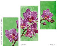 """Схема для частичной вышивки бисером """"Орхидея"""", триптих 43"""