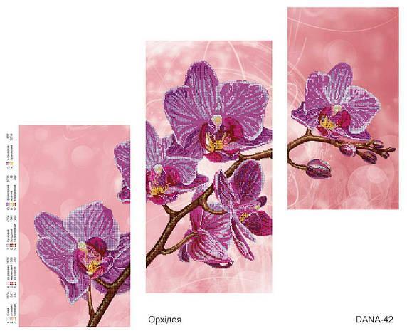 """Схема для частичной вышивки бисером """"Орхидея"""", триптих 42, фото 2"""