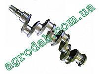 Вал коленчатый МТЗ-80, Д-240 (240-1005015-Б1)