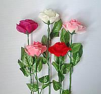 Роза одиночная раскрытая , 55 см