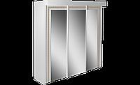 Шкаф купе Донателла  3Д
