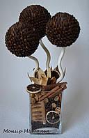 """Кофейное дерево """"Стильное"""", фото 1"""
