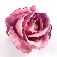 Головка розы 1958 (диаметр головки 9 см)