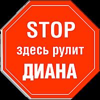 """Табличка на дверь """"STOP: Здесь рулит ДИАНА!"""""""