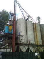 Нория зерновая ТКЗ-50   14м