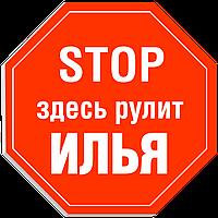 """Табличка на дверь """"STOP: Здесь рулит ИЛЬЯ!"""""""