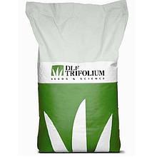 Семена газона САНШАЙН(SANSHAINE) 20 кг DLF-TRIFOLIUM