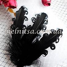 Перо гусиное, с завитками, 13-16 см, цвет черный