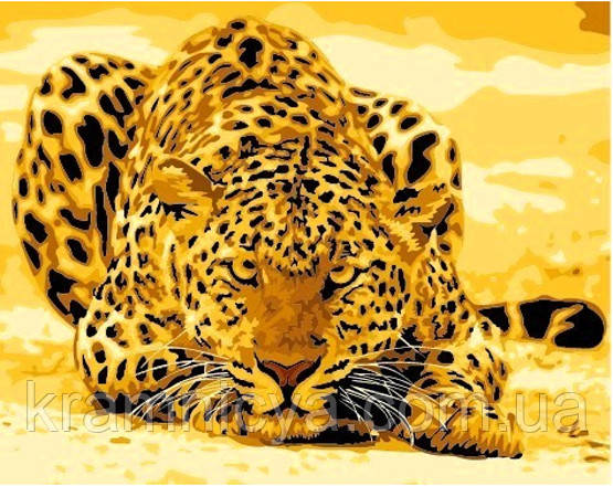 """Картина раскраска по номерам на холсте """"Леопард"""", MG305, 40х50см"""