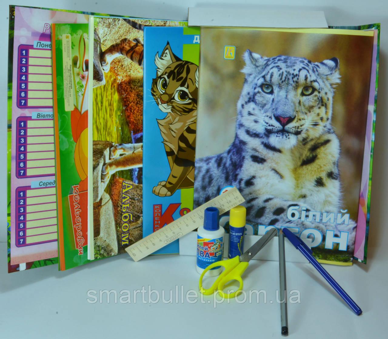 Подарок выпускнику детского сада для мальчиков Эконом-1.