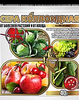 """Инсекто-фунгицид """"Сера коллоидная""""  (АгроМакси) 40г"""