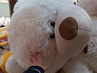 Плюшевый мишка толстый (медведь) Харьков 2 метра 4 цвета