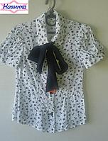 Блуза для девочки с бантом 2, упаковка 5 штук, рост от 122 до 146 см