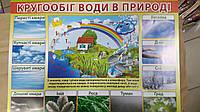 """НП Плакат (школа) """"Світ Поздоровлень А2""""/кругообіг води в природі"""
