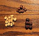 1кг Арабика 100%  Бурунди Rommashka.com, фото 3