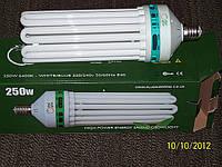 Энергосберегающие лампы высокой мощности ЭСЛ 125-300 Вт для теплиц и гидропоники