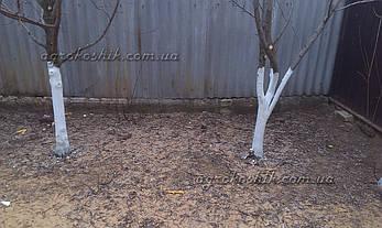 Садовая побелка для деревьев 1кг, фото 2