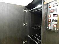 Электростатическая коптильня холодного и горячего копчения  с функцией сушки и вяления, двухуровневая COSMOGEN