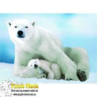 Пазл Eurographics - Белая медведица с медвежонком (Polar Bear and Baby)